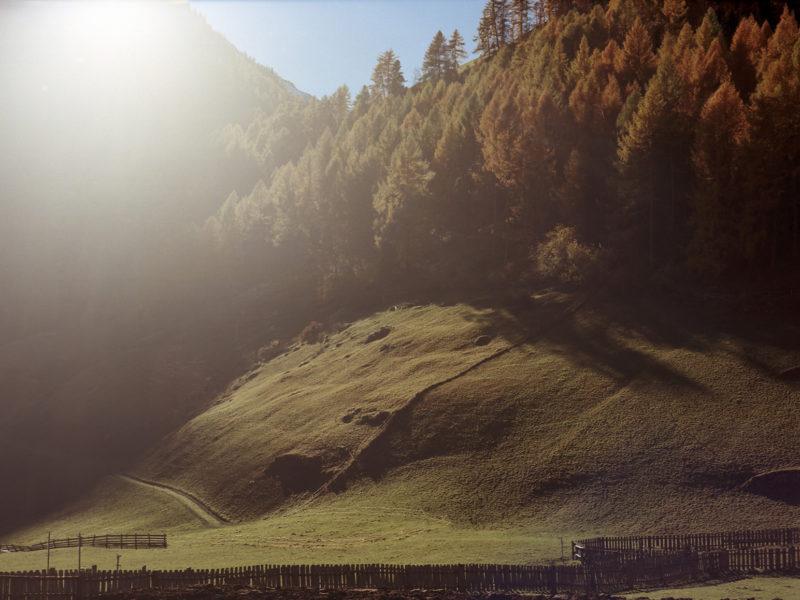 Herbst im Schnals