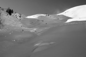 Schnee schwarz weiß