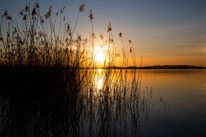 Chiemsee Ufer Sonnenuntergang